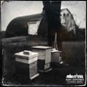 Bee hives at Cooper Road Farm