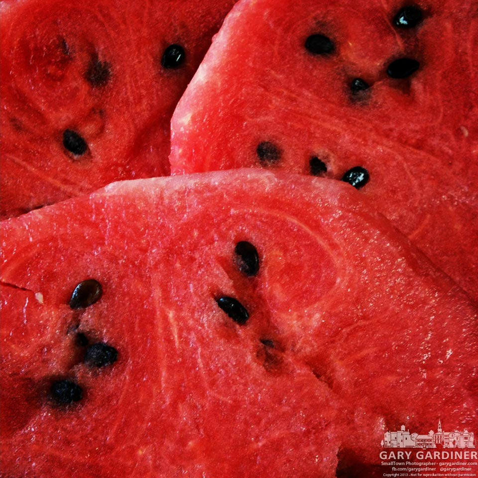 Watermelon for my mid-day snack. My Final Photo for July 8, 2013.