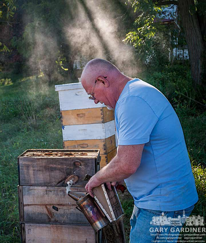 Beekeeper puff smoke across one of his hives at the Cooper Road Farm as he makes the final summer inspection of their progress in making honey and a strong community that will easily survive winter. My Final Photo for Sept. 23, 2013.