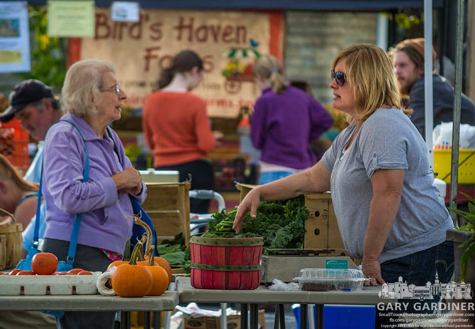 Customers get advice and friendship among vendors at the uptown Westerville Farmers Market. My Final Photo for Sept. 25, 2013.
