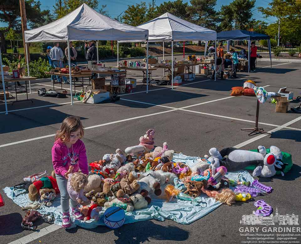 A young girl sorts through the selection of stuffed animals offered for free at the Westerville Sunrise Rotary Swap Your Stuff Day where people could recycle to other residents some of the discards in their homes. My Final Photo for September. 14, 2013.