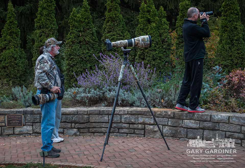 A pro photographer and an amateur birdwatcher study the same white hummingbird making a temporary stay in the herb garden at inniswood Metro Gardens. My Final Photo for Oct. 29, 2013.