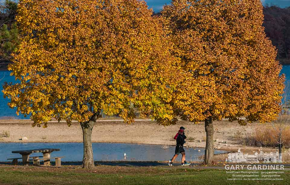 Two joggers at hoover Reservoir run in the shade of trees bearing leaves glowing with the warm colors of fall. My Final Photo for Nov. 10, 2013.