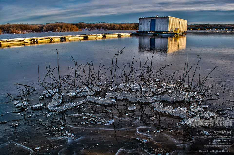 The afternoon sun strikes the city boat dock on Hoover Reservoir where chunks of ice hang from plants along the edge of the lake.