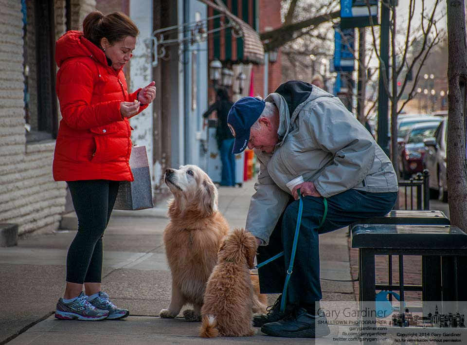 Two dogs and their owners share donuts in front of Schneider's Bakery on a Saturday morning. My Final Photo for March 15, 2014.