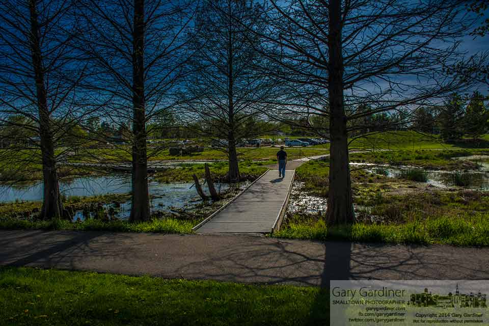 A lone walker crosses the wetlands walkway at Highlands Park on a Spring afternoon. My final Photo for May 6, 2014.