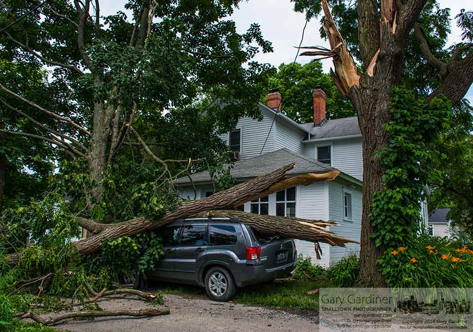 The broken limb of a walnut tree lies across the roof of a crushed Mitsubishi SUV as its owner waits for a settlement from the insurance company. My Final Photo for June 22, 2014.