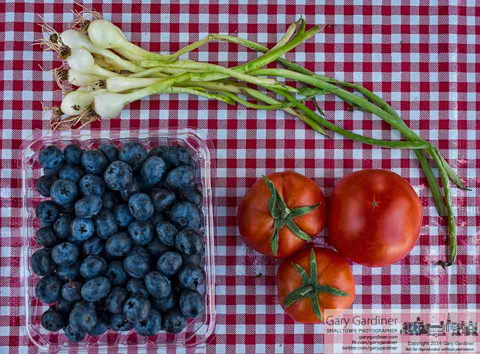 Blueberries, tomatoes, and onions sit on a red gingham cloth at the Uptown Westerville Farmers Market. My Final Photo foe July 9, 2014.