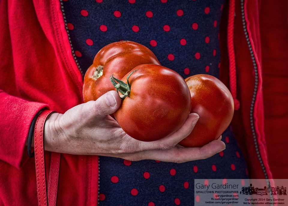 A woman carries her carefully chosen tomatoes to the weigh station at the Uptown Westerville Farmers Market. My Final Photo for July 16, 2014.