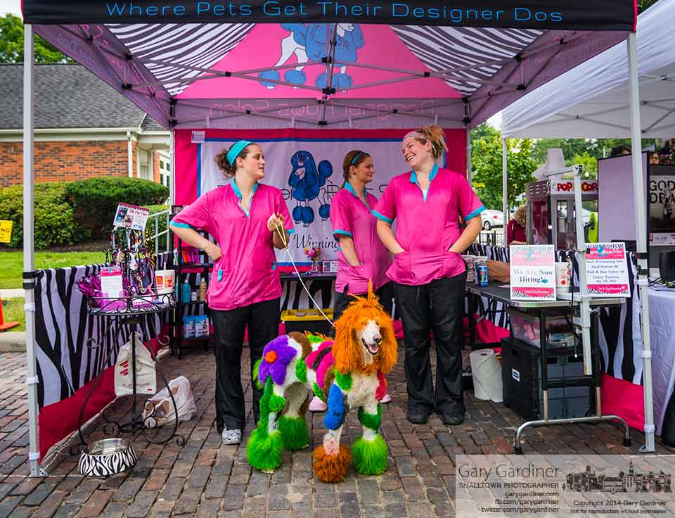 A brightly and artfully cut and painted dog stands as an example of the possibilities for a dog grooming service at Fourth Friday in Uptown Westerville. My final Photo for Aug 22, 2014.