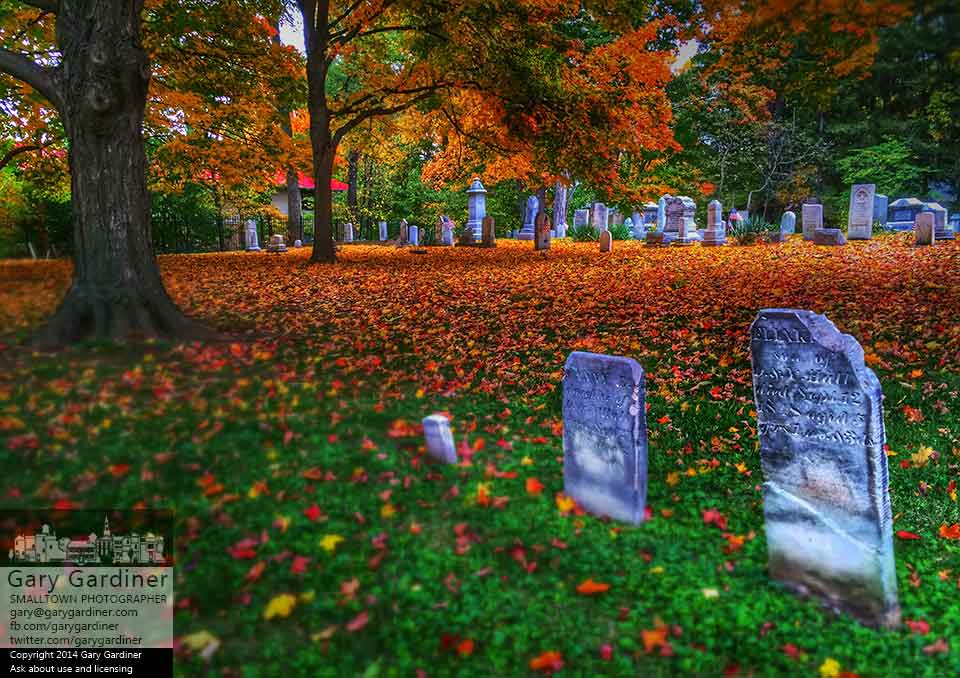 Maple leaves settle on the grounds of Otterbein Cemetery adding the bright colors of fall to the historic site. My Final Photo for Oct. 18, 2014.