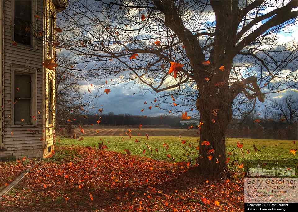 Freshly fallen leaves are blown across the fields at the Braun farm as the sun breaks between clouds leading the way to colder temperatures. My Final Photo for Nov. 24, 2014.