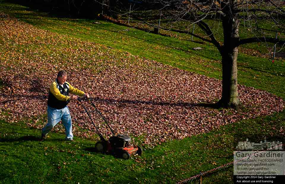 A man uses his lawn mower to mulch the carpet of leaves in his backyard instead of bagging or raking them for collection. My Final Photo for Nov. 3, 2014.