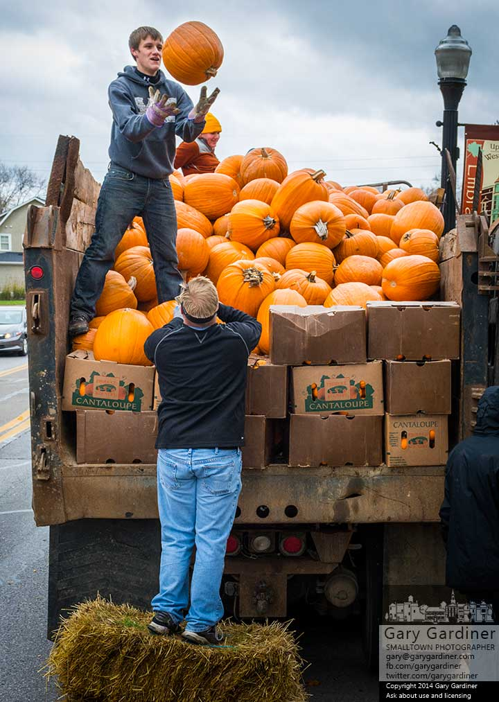Boy Scouts and their leaders remove the leftover pumpkins from their sales lot in the front yard of the Masonic Temple. My Final Photo for Nov. 1, 2014.