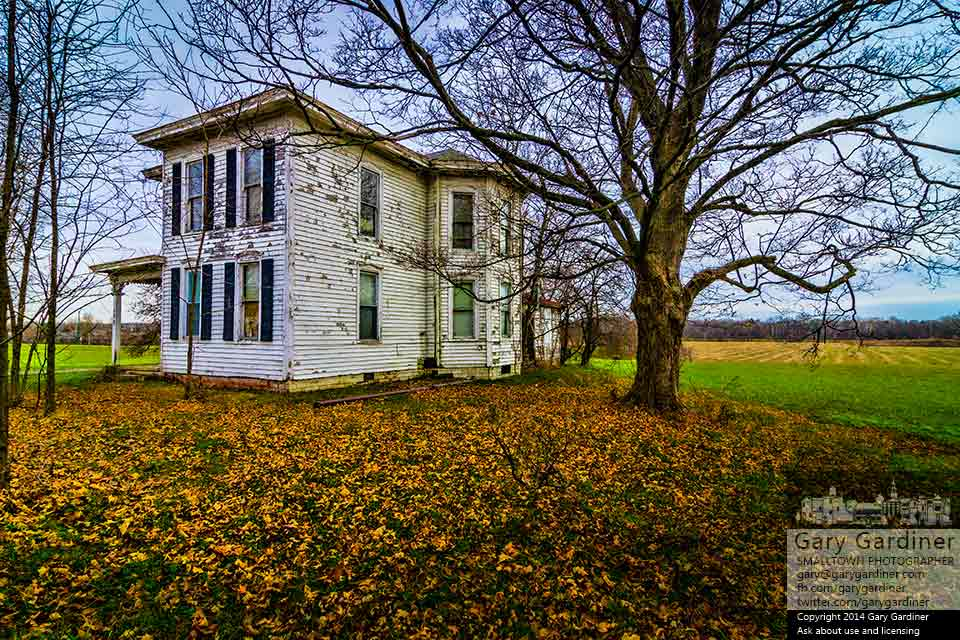 A thin carpet of maple leaves cover the grounds beside the old farm house at the Braun Farm. My Final Photo for Dec. 8, 2014.