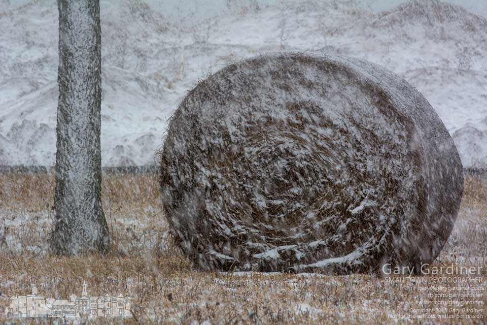 Wet snow driven by high winds sticks to bales of hay on fields owned by Otterbein Univeristy near the Braun Farm . My Final Photo for Feb. 14, 2015.