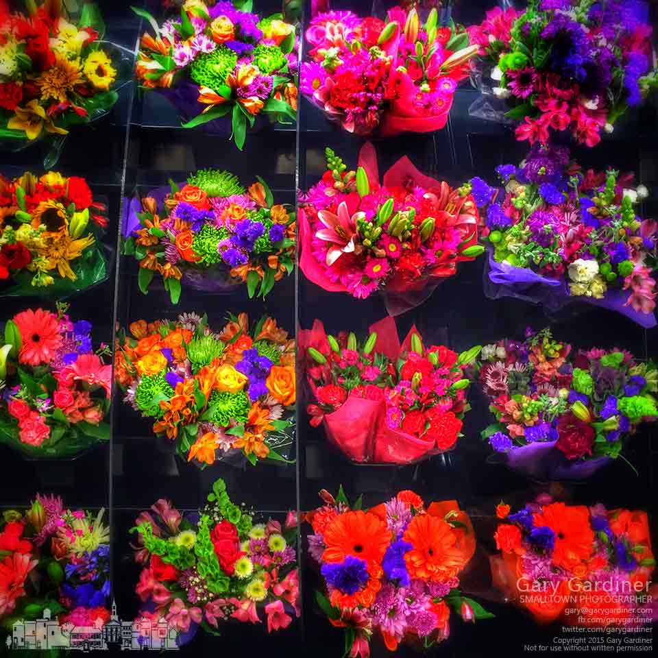 Rows of buckets of bright flowers are displayed in the Kroger store as temperatures outside hover near zero degrees. My Final Photo for Feb. 27, 2015.