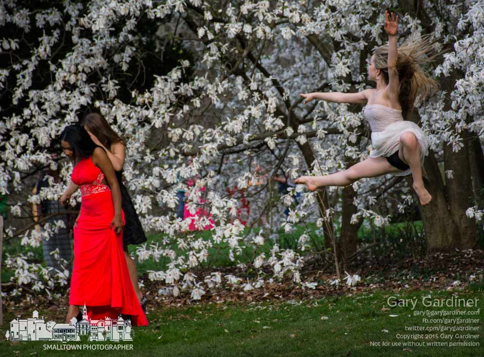 A dancer leaps across the lawn at Inniswood while Westerville South seniors pose for photos before the prom. My Final Photo for April 18, 2015.