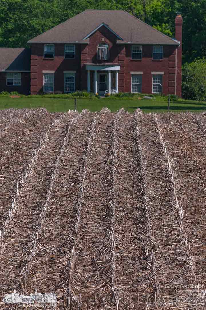 Rows of corn stubble lead to a farm house as farmers work around rainy days to plant soybean and corn. My Final Photo for May 19, 2015.