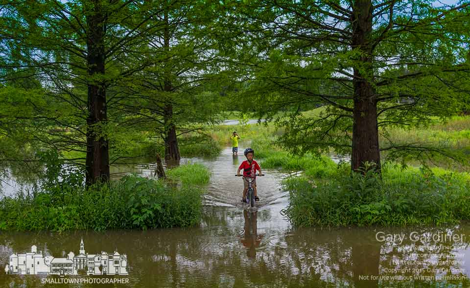 A pair of brothers ride a bike and walk through the flooded walkway at Highlands Park wetlands after heavy rains. My Final Photo for June 20, 2015.