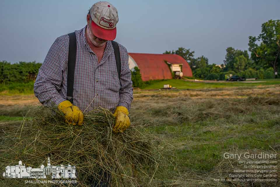 Tom inspects sections of late cut hay for moisture before baling it after having to wait several weeks for the cut because of so much rain on the Braun Farm. My Final Photo for July 6, 2015.