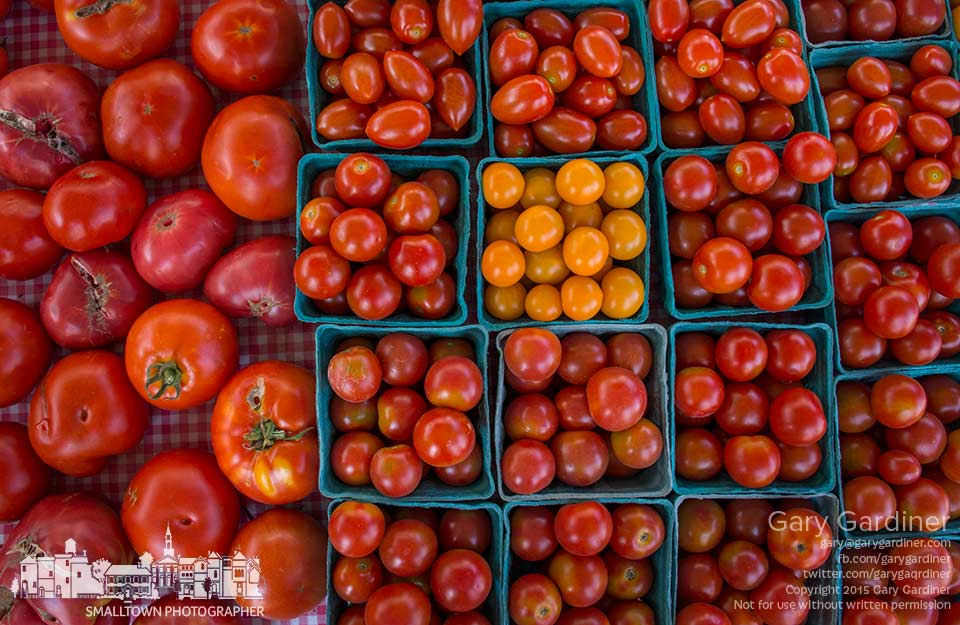 A fresh crop of cherry tomatoes and their larger cousins sit on display at the Uptown Westerville Farmers Market. My Final Photo for Aug. 5, 2015.