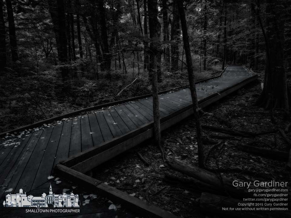 One of the boardwalk trails in Inniswood Metro Gardens sits in the dark of a warm summer evening. My Final Photo for Aug. 9, 2015.
