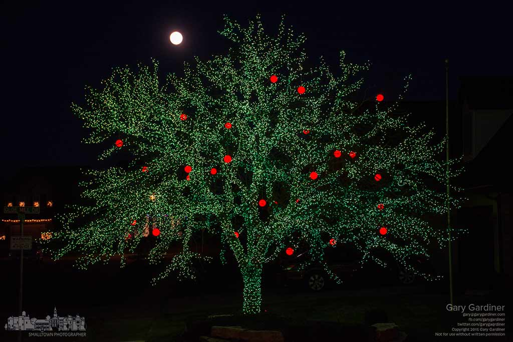 The beginnings of an overnight full moon rises behind an apple tree decorated with the appropriately colored lights and ornaments on a street corner in Westerville. My Final Photo for Dec. 24, 2015.