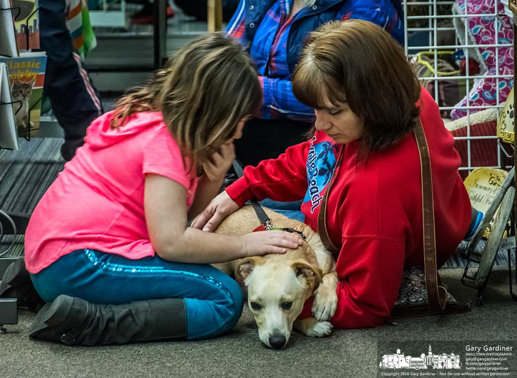 A mother and daughter stroke one of the dogs offered for adoption at Captivating Canines in Uptown Westerville. My Final Photo for January , 2016.