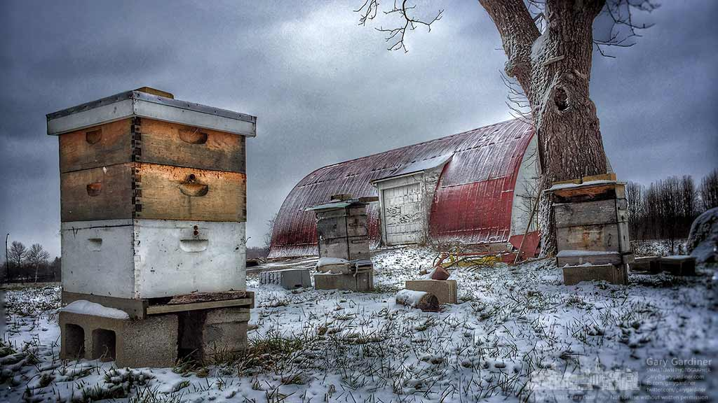 Snow, ice, and a cold wind buffet the three bee hives at the Braun Farm as the first cold wave of the season drops temperatures below normal for several days. My Final Photo for January 11, 2016.