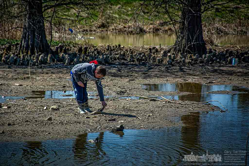 One of two boys exploring the Highlands wetlands sorts through what they found in the mud. My Final Photo for April 3, 2016.