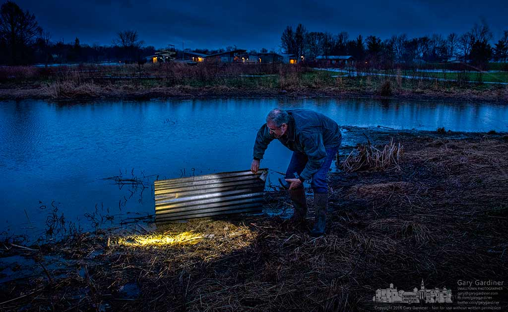 Mark Dilley shines a flashlight onto the wetlands at Highlands Park after turning over a piece of corrugated roofing used as a test bed for frogs, toads, voles, and other small creatures on Frog Friday at the park. My Final Photo for April 8, 2016.