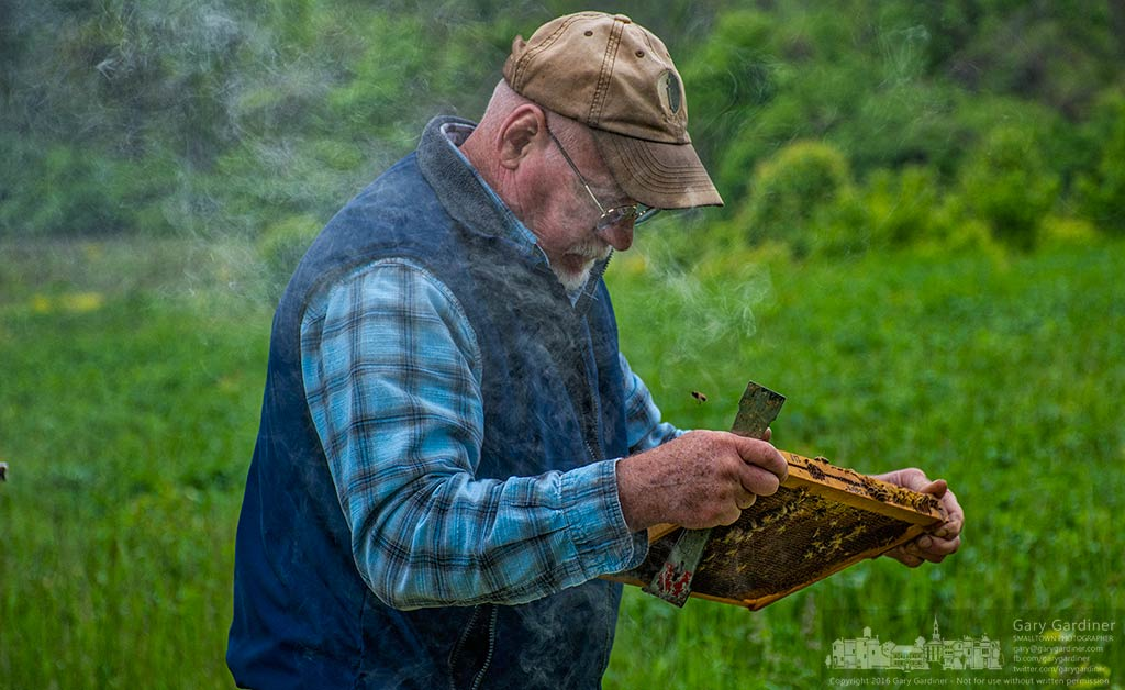 Beekeeper Mel Sword stands in smoke while he inspects one of his hives looking for a queen that would help guarantee the hives health and vitality. My Final Photo for May 9, 2016.