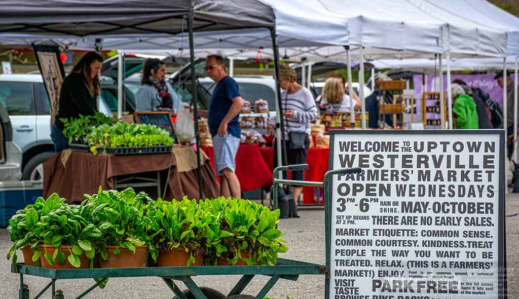 A sign and a wagon of pots of spring greens greets shoppers on the opening day of the Uptown Westerville Farmers Market. My Final Photo for May 4, 2016.