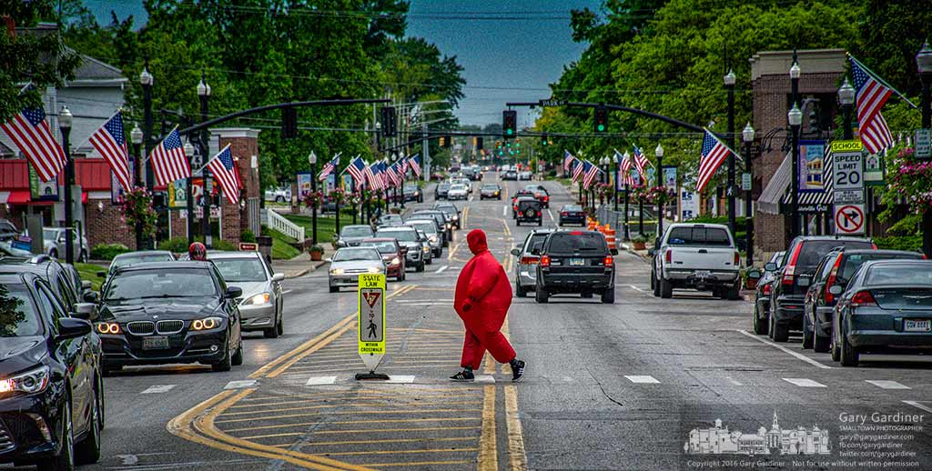 A man dressed in an air-filled inflated red costume crosses State Street on his way to Java Central in Uptown Westerville. My Final Photo for May 20, 2016.