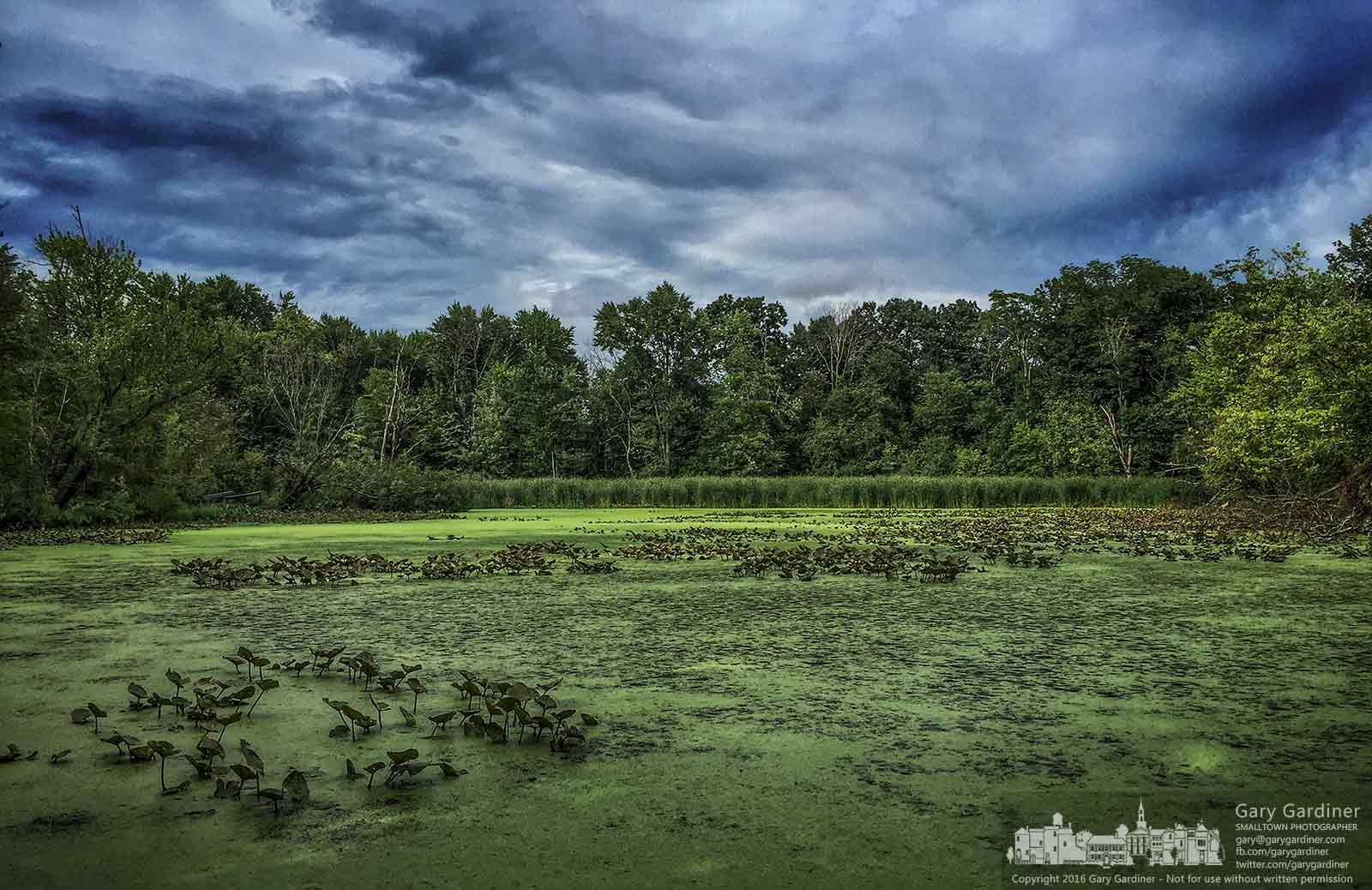 The waters at Boyer Nature Preserve are still as a late afternoon storm moves to the east after passing by the Westerville park. My Final Photo for Aug. 14, 2016.