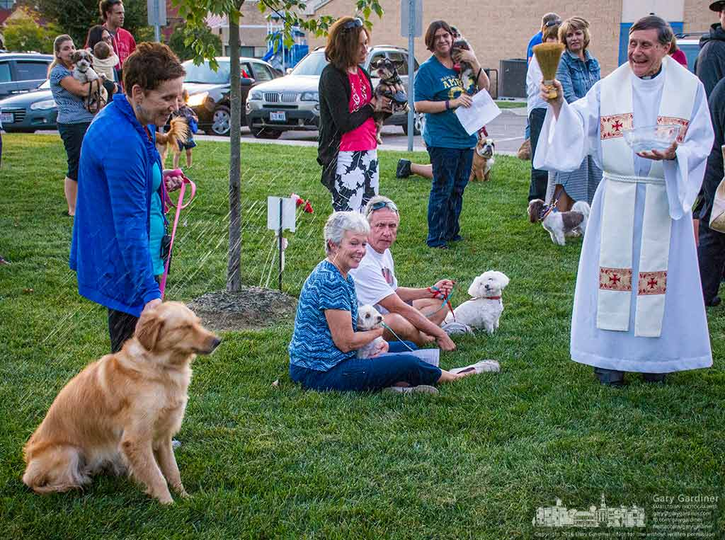 Father Rod Aubrey sprinkles holy water on pets gathered by their owners for the blessing of animals on the feast day for St. Francis of Assisi. My Final Photo for Oct. 4, 2016.
