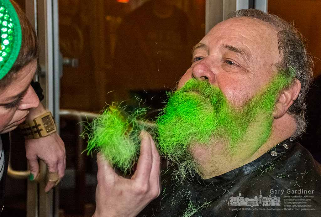 Woody Steck's green beard flies onto the floor as one of the participants in the Beards for a Cause fundraiser at Jimmy V's in Uptown Westerville on St. Patrick's Day. My Final Photo for March 17, 2017.