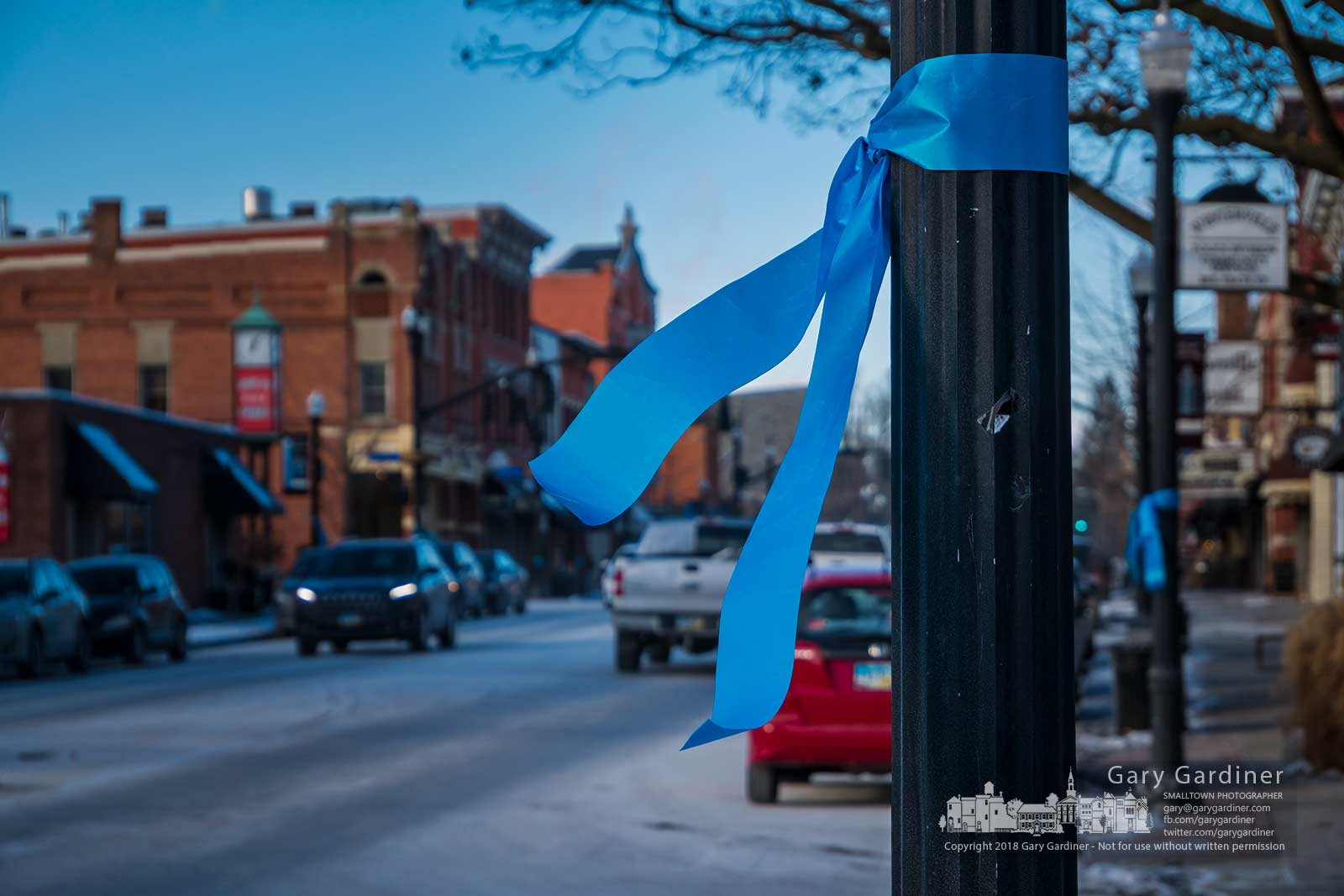 "Teal ribbons hang from poles and trees in Uptown Westerville as part of the ""Turn the 'Ville Teal"" cervical cancer awareness program. My Final Photo for Jan. 6, 2018."