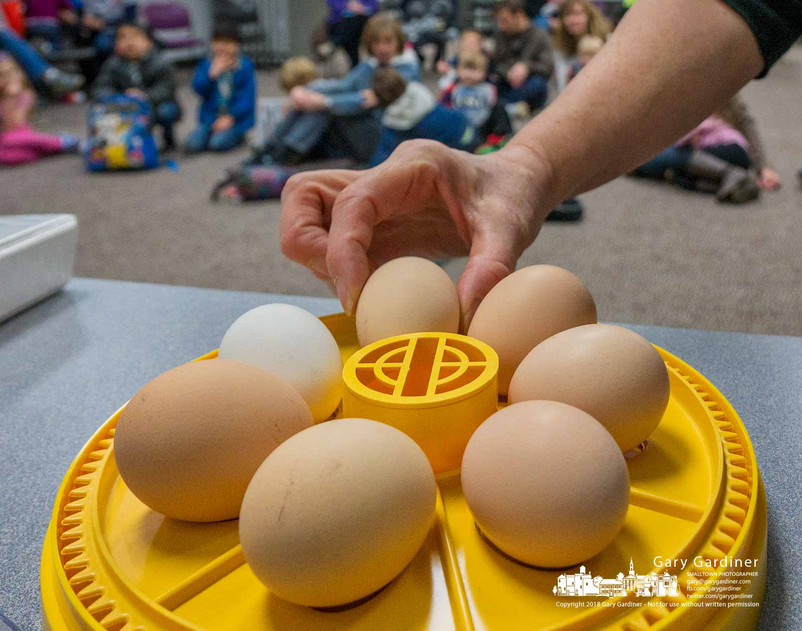 An instructor points out to children at the public library how she uses a small incubator to hatch eggs into chickens. My Final Photo for March 22, 2018.