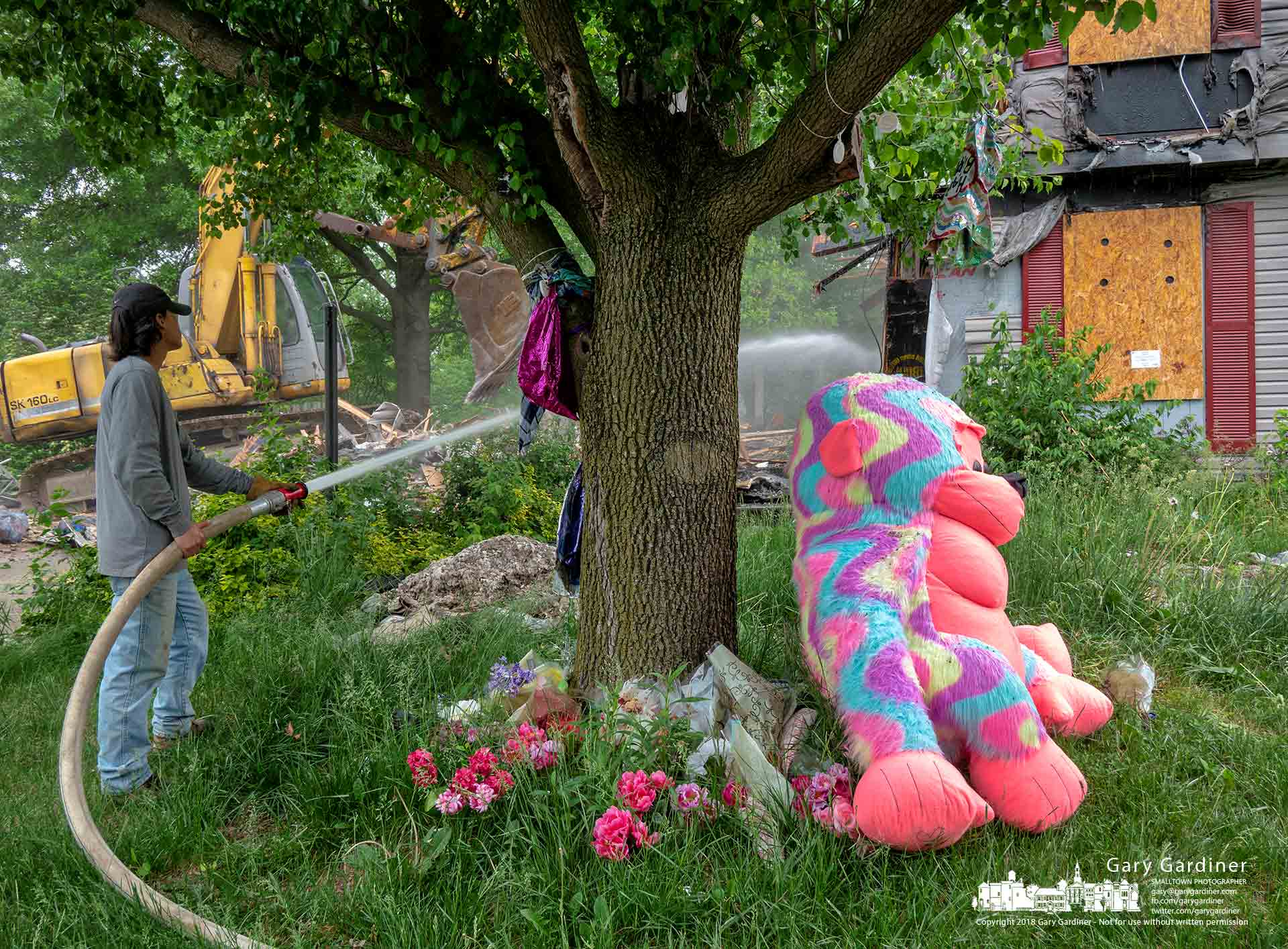 A memorial for Hannah Starver who died in a house fire sits beneath a tree in the front yard of the house as a demolition crew removes it. My Final Photo for May 18, 2018.