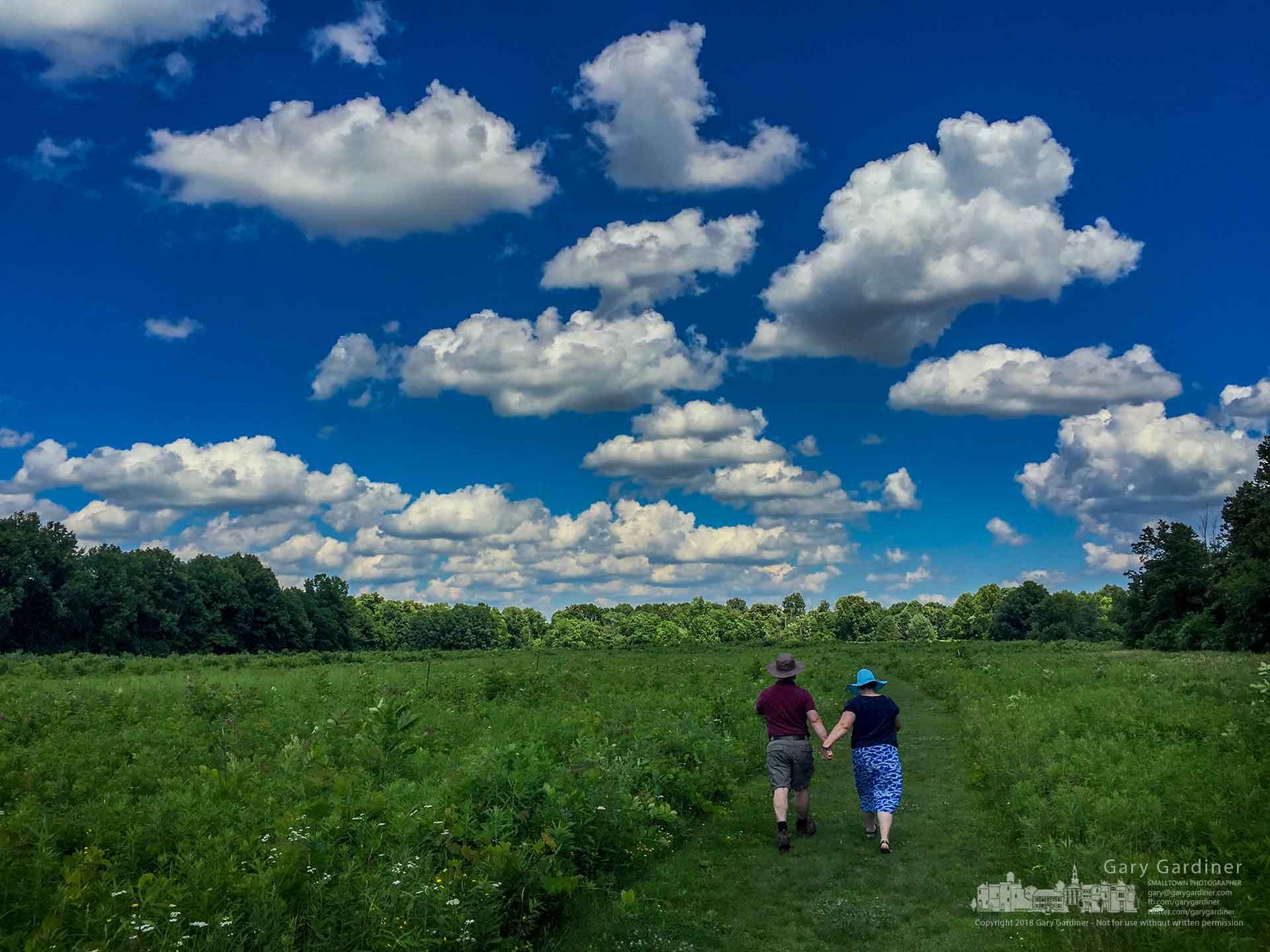 A couple walks hand-in-hand along a trail through Sharon Woods Park on a breezy Sunday afternoon. My FinalPhoto for June 24, 2018.