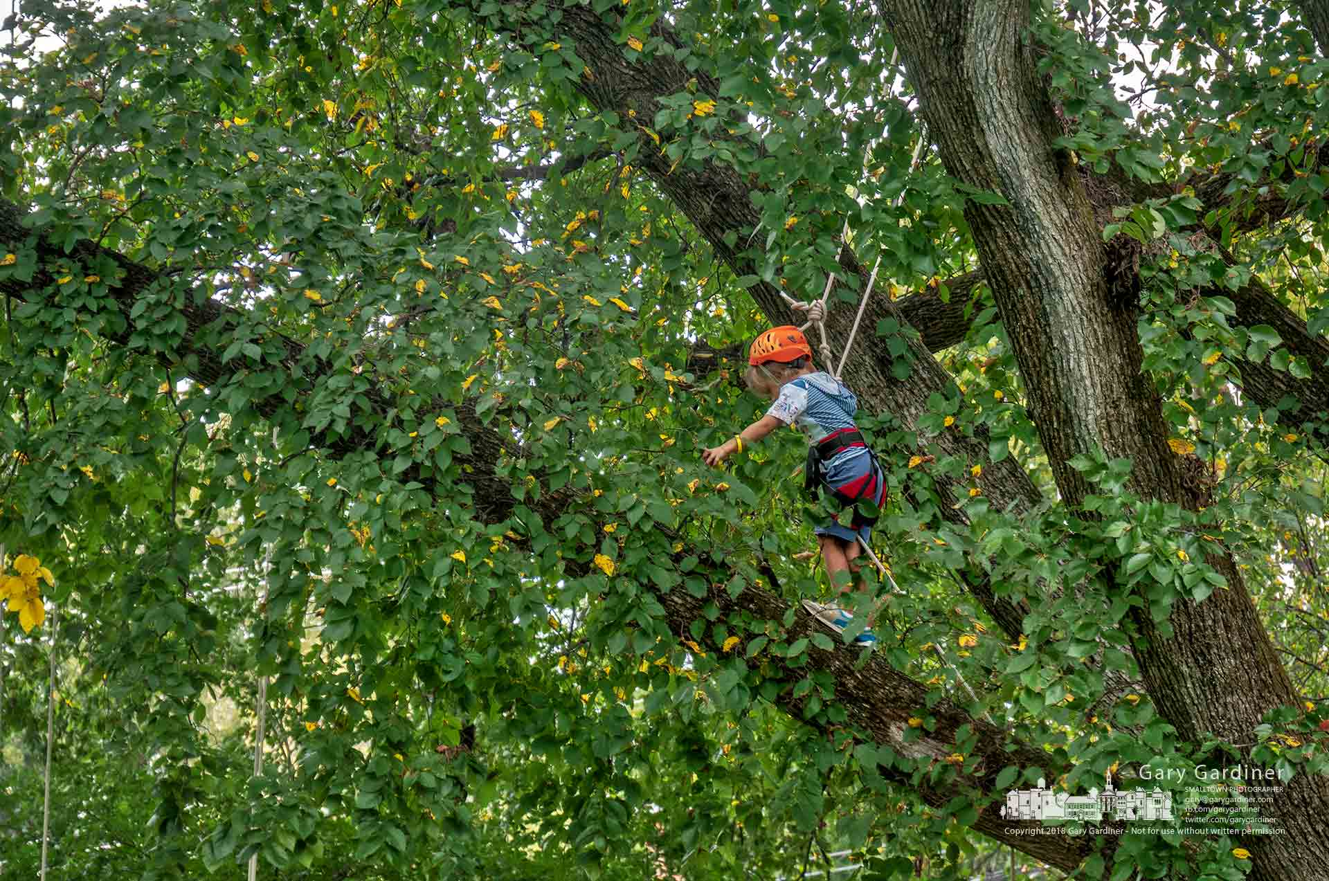 A young girl steadies herself as she navigates along a tree limb about 20 feet over the sledding hill at Alum Creek Park during Autumn Arborfest where kids had hands-on activities in and about trees. My Final Photo fore Sept. 22, 2018.