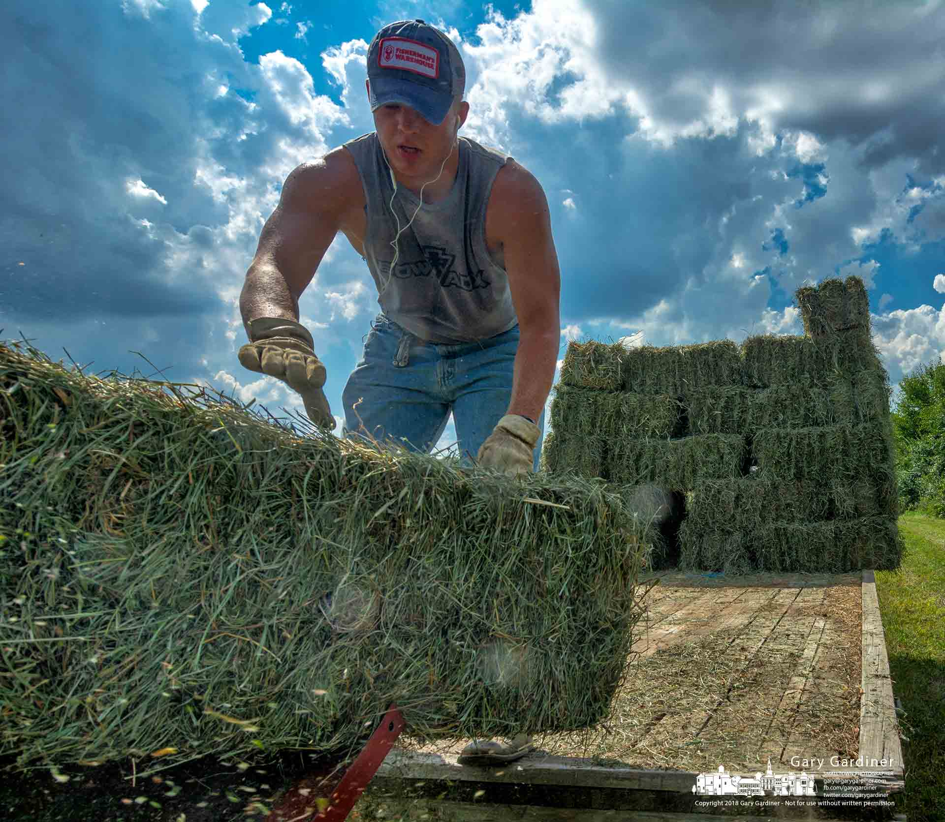An Otterbein sophomore loads hay onto a hay wagon from one of the Otterbein fields on Campusview and Cooper Roads on a day when the temperature hit 93 degrees, just three degrees less than the record for the date. My Final Photo for Sept. 4, 2018.