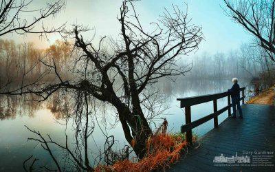 Wetlands Foggy Sunrise