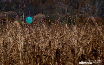 Blue Monday Balloon