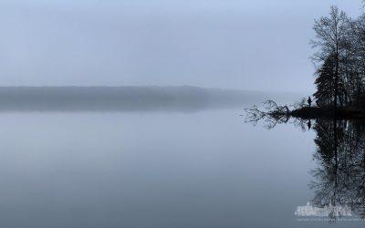 Fishing In The Morning Fog