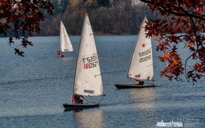 Brisk Day For Sailing