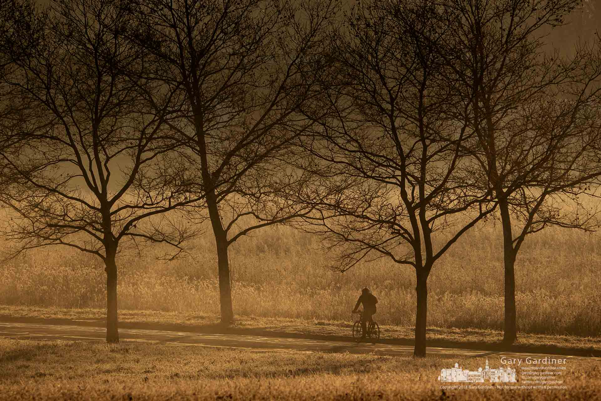 A bicyclist rides in the morning fog downhill along Cooper Road between to Braun Farm property and the Otterbein hay fields. My Final Photo for Dec. 17, 2018.
