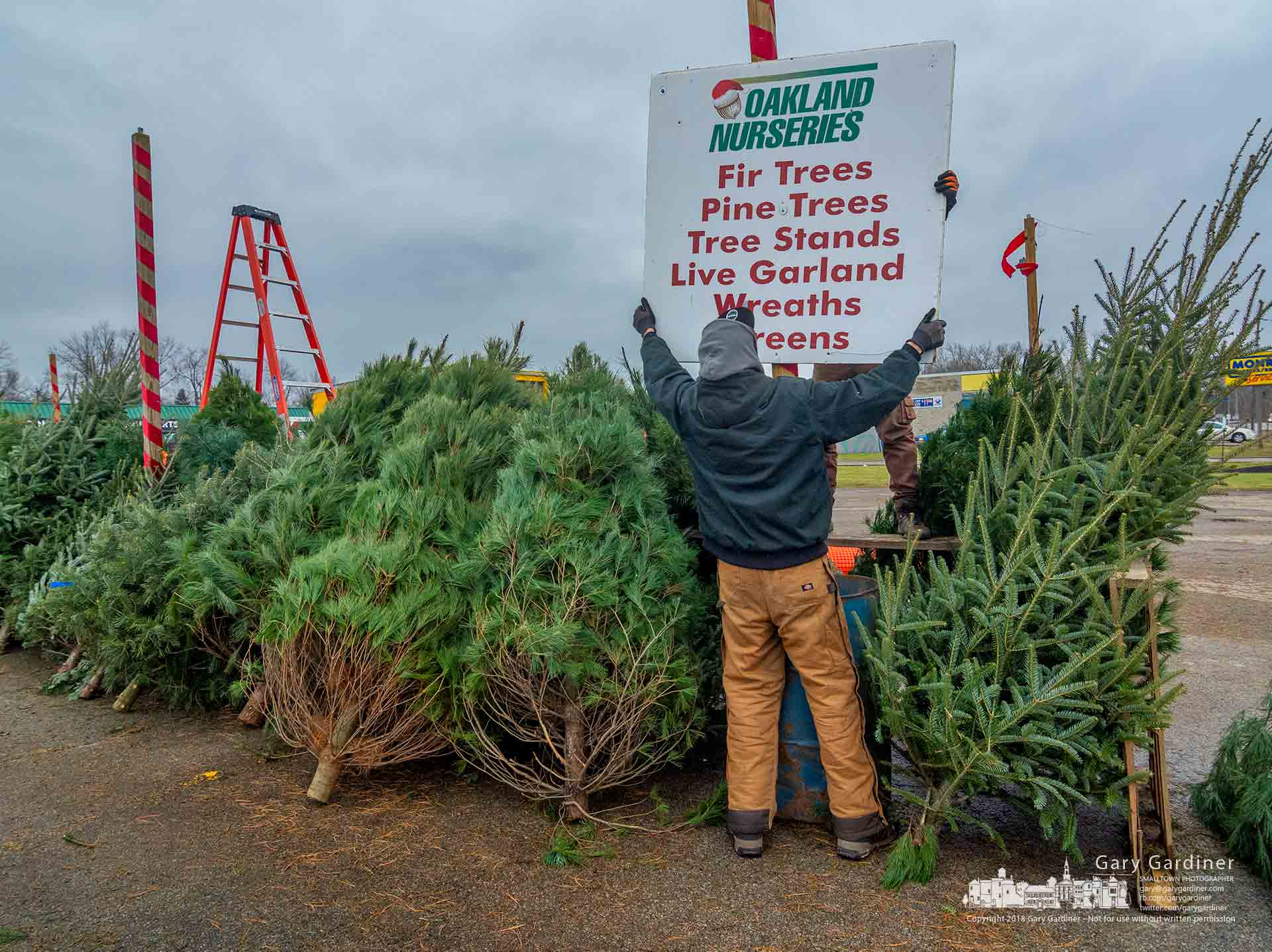 The last sign advertising the Christmas tree lot at Glengary Center is removed as the lot closes for the season. My Final Photo for Dec. 22, 2018.